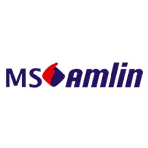 Partenaire NOÉ Assurances Conseil - MS Amlin